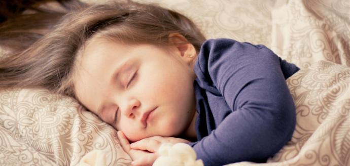 Proč se říká spát jako dudek? Jaký je původ úsloví spát jako dudek?
